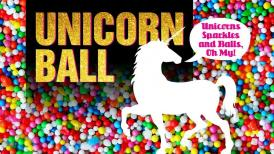 2018 Unicorn Ball - A VPS Fundraiser