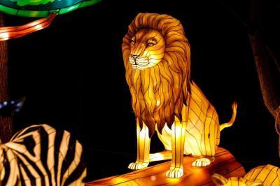Magic awaits at Woodland Park Zoo's new WildLanterns!