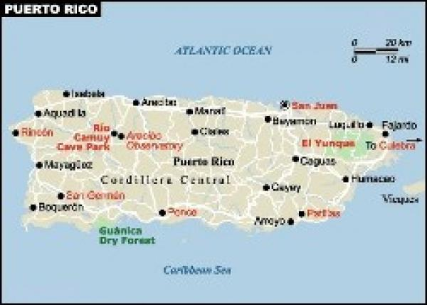 homicide in puerto rico
