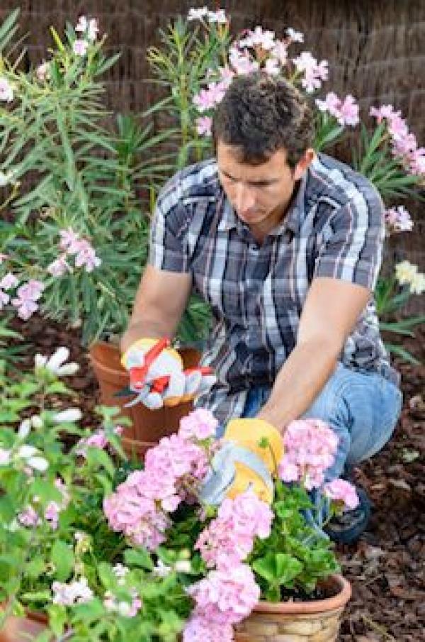 Садовник и молодая хозяйка
