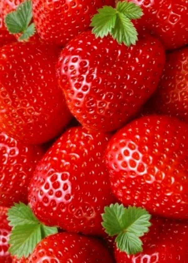 strawberry industry