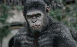 A Scene from 'Dawn of the Planet of the Apes'