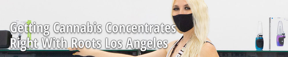 Getting Cannabis Concentrates Right With Roots Los Angeles