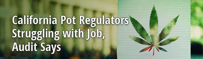 California Pot Regulators Struggling with Job, Audit Says