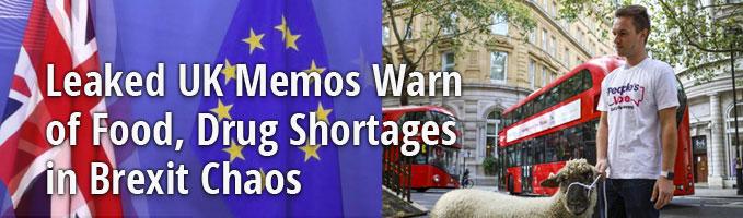 Leaked UK Memos Warn of Food, Drug Shortages in Brexit Chaos
