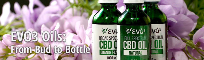EVO3 Oils: From Bud to Bottle