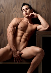 Gymnast Builds