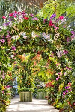#plantlove Highlights