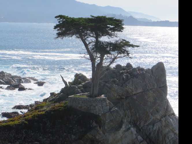 Carmel delights visitors with art, dining, wine, and hikes