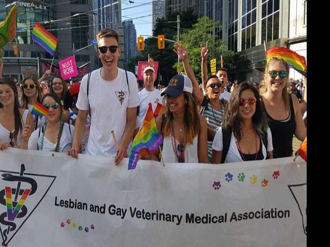 New name for gay vet group