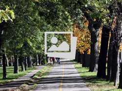 Autumn Travel :: Montreal, Canada