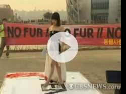 Fendi Fur Sparks Outrage in Seoul