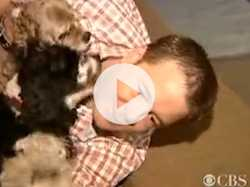 Sleeping With Pets Could be Deadly