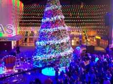 Universal CityWalk Tree Lighting