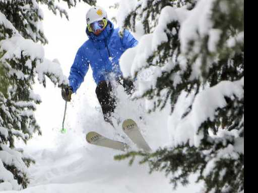 Deer Valley: Seeing the Powder Through the Trees