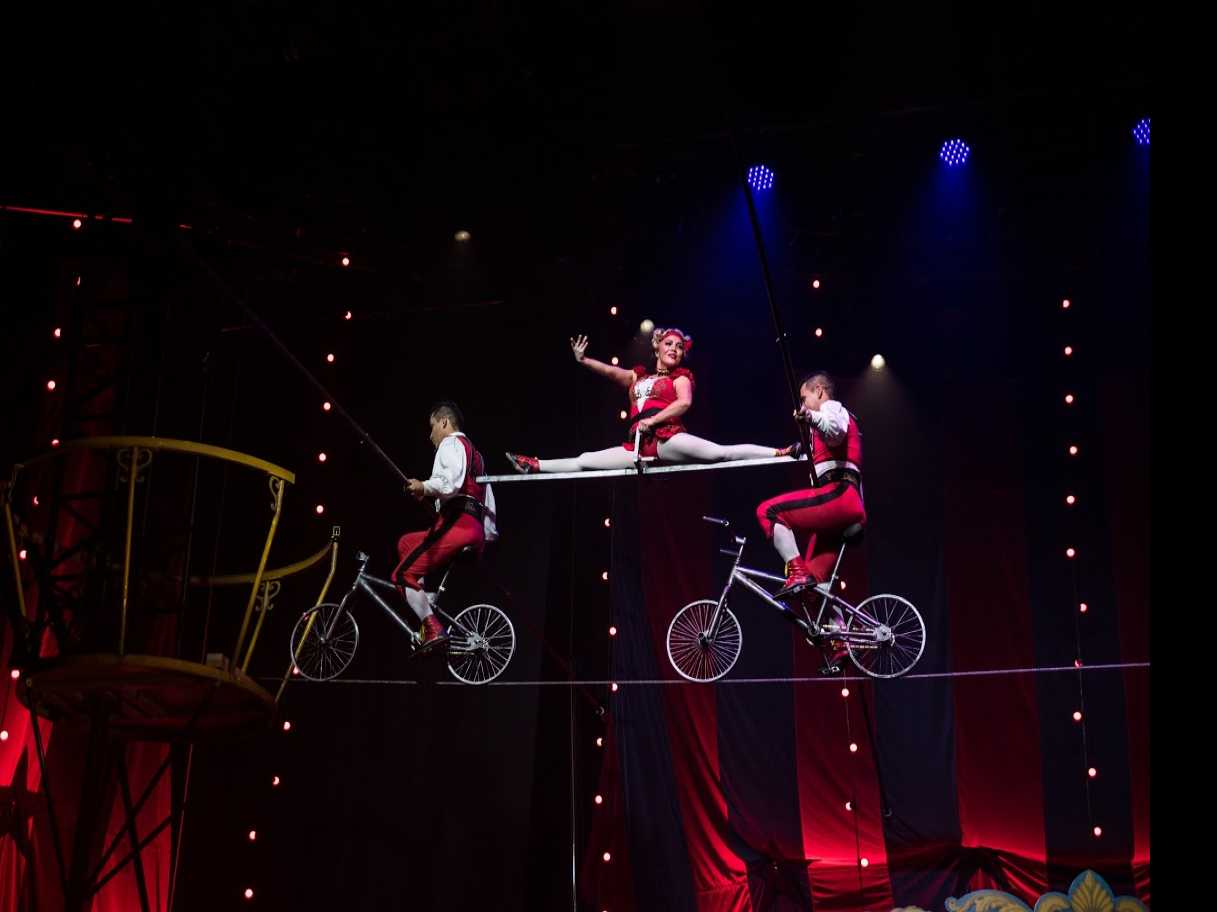 Review :: Circus 1903