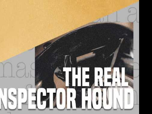 Review :: The Real Inspector Hound