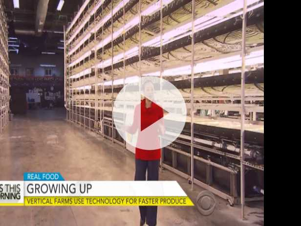 How Aerofarms' Vertical Farms Grow Produce