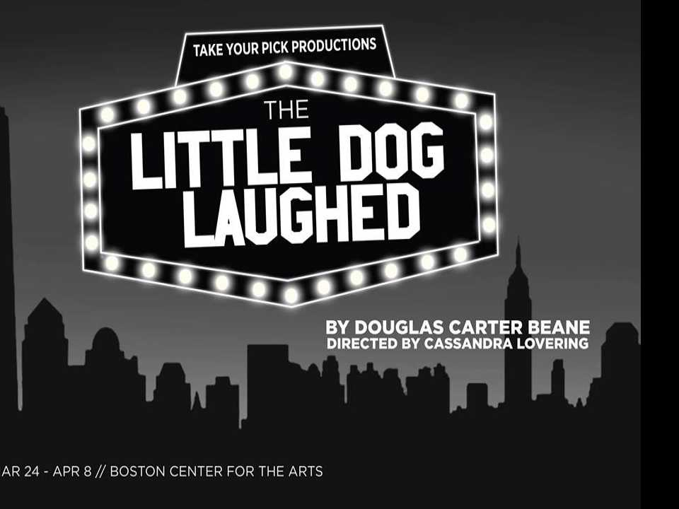 Review :: The Little Dog Laughed