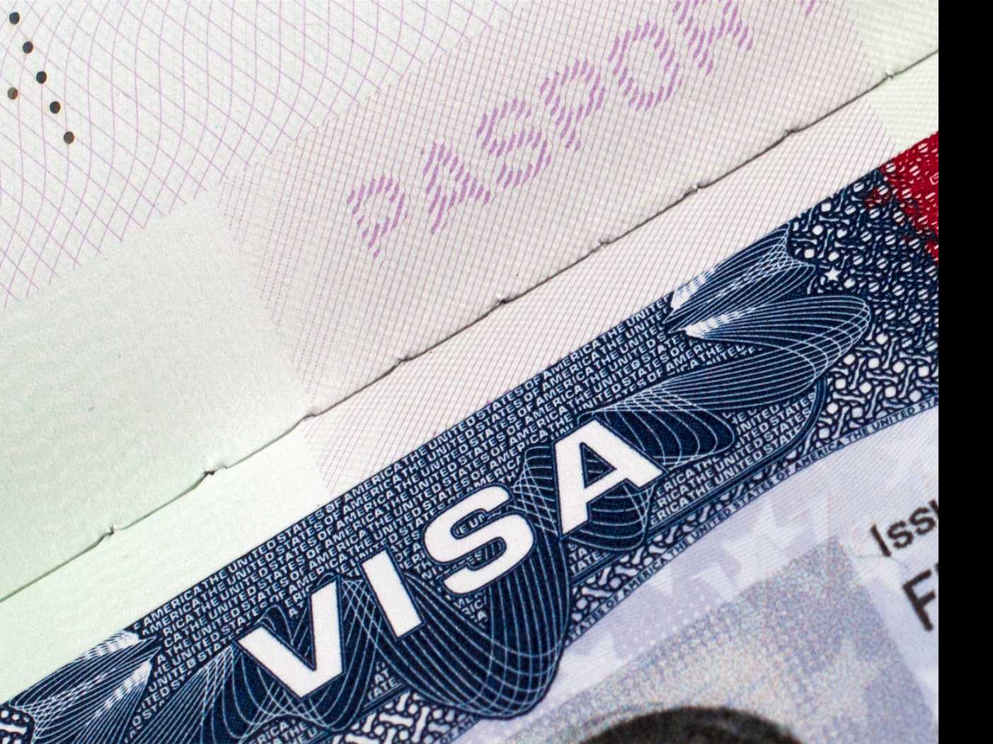 Trump Order Would Target High Skilled Worker Visa Program