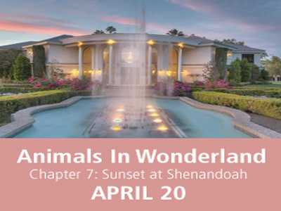 Nevada SPCA Present Animals in Wonderland Benefit