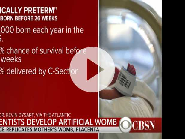 Artificial Wombs Could Increase Premature Babies' Chances of Survival