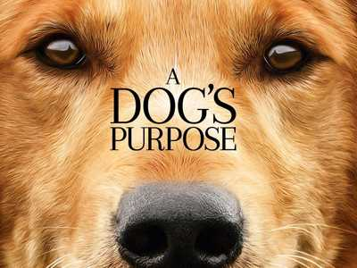 Review :: A Dog's Purpose
