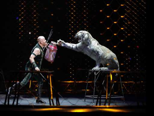 AP Exclusive: The Last Days of the Ringling Bros. Circus