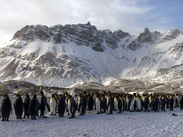 China Says No Mining in Its Immediate Plans for Antarctica