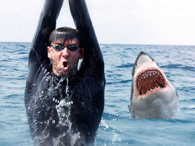 Watch: Michael Phelps Loses by 2 Seconds to Simulated Great White in 'Shark Week'