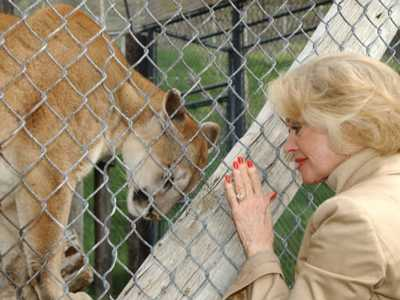 To Protect and Preserve :: A Conversation with Tippi Hedren