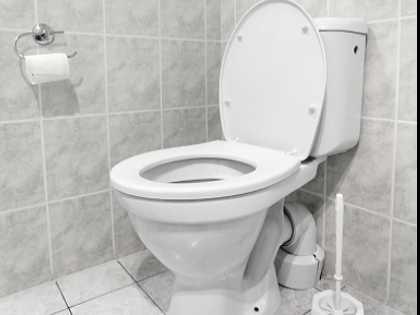 Accused Burglar Doesn't Flush Toilet, Leaves DNA for Police