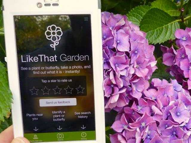 Mobile Gardening Apps Are Growing by the Minute