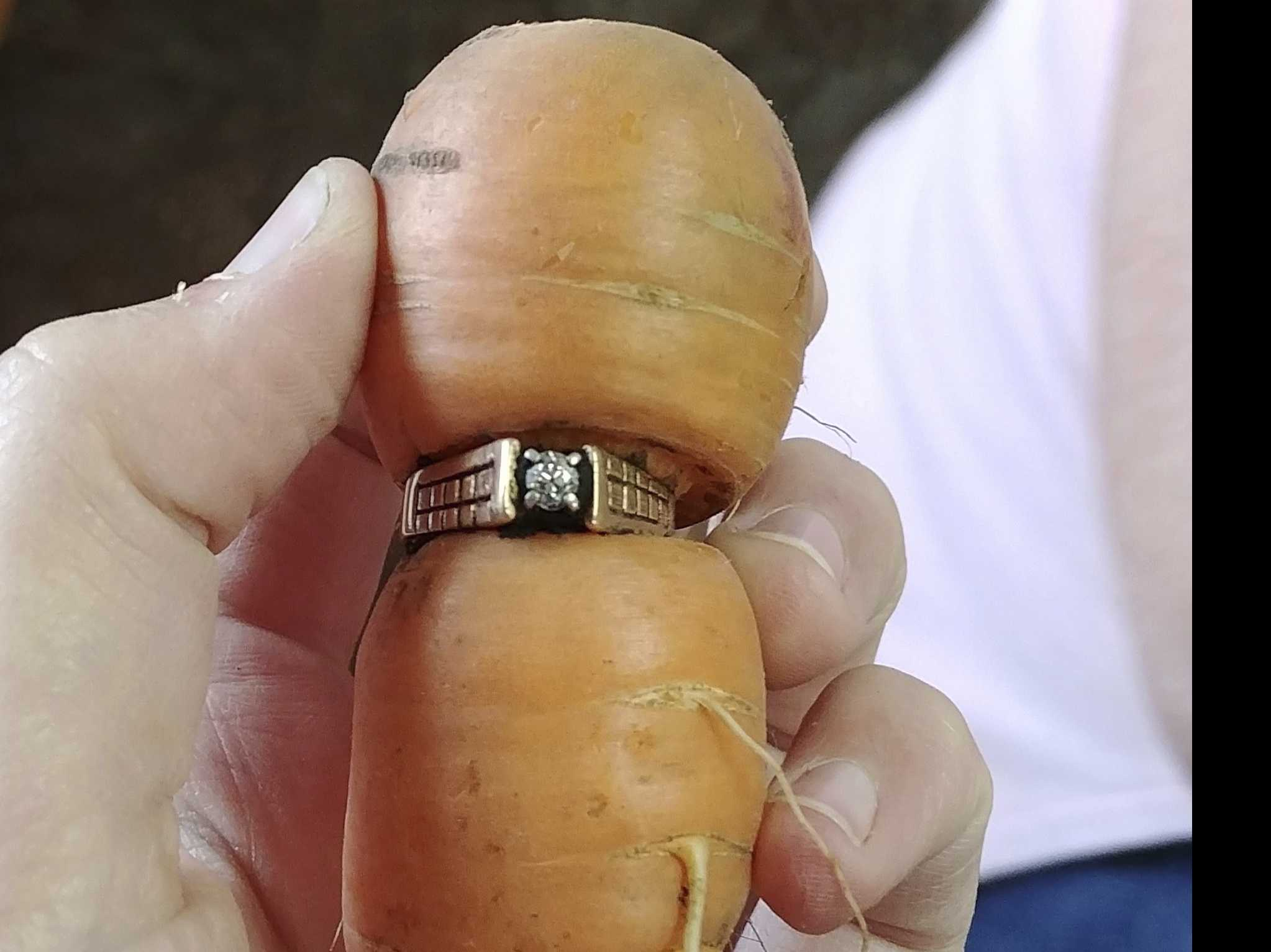 Lucky Carrot: Canadian Woman Finds Mother-in-Law's Engagement Ring