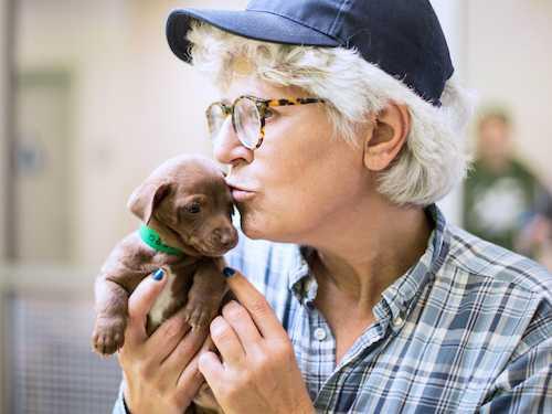 LGBTQ Filmmaker JD Disalvatore Lost Her Long Battle With Cancer