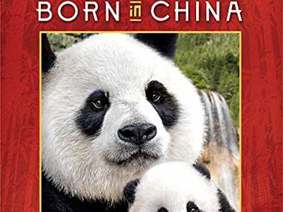 Review :: Born in China