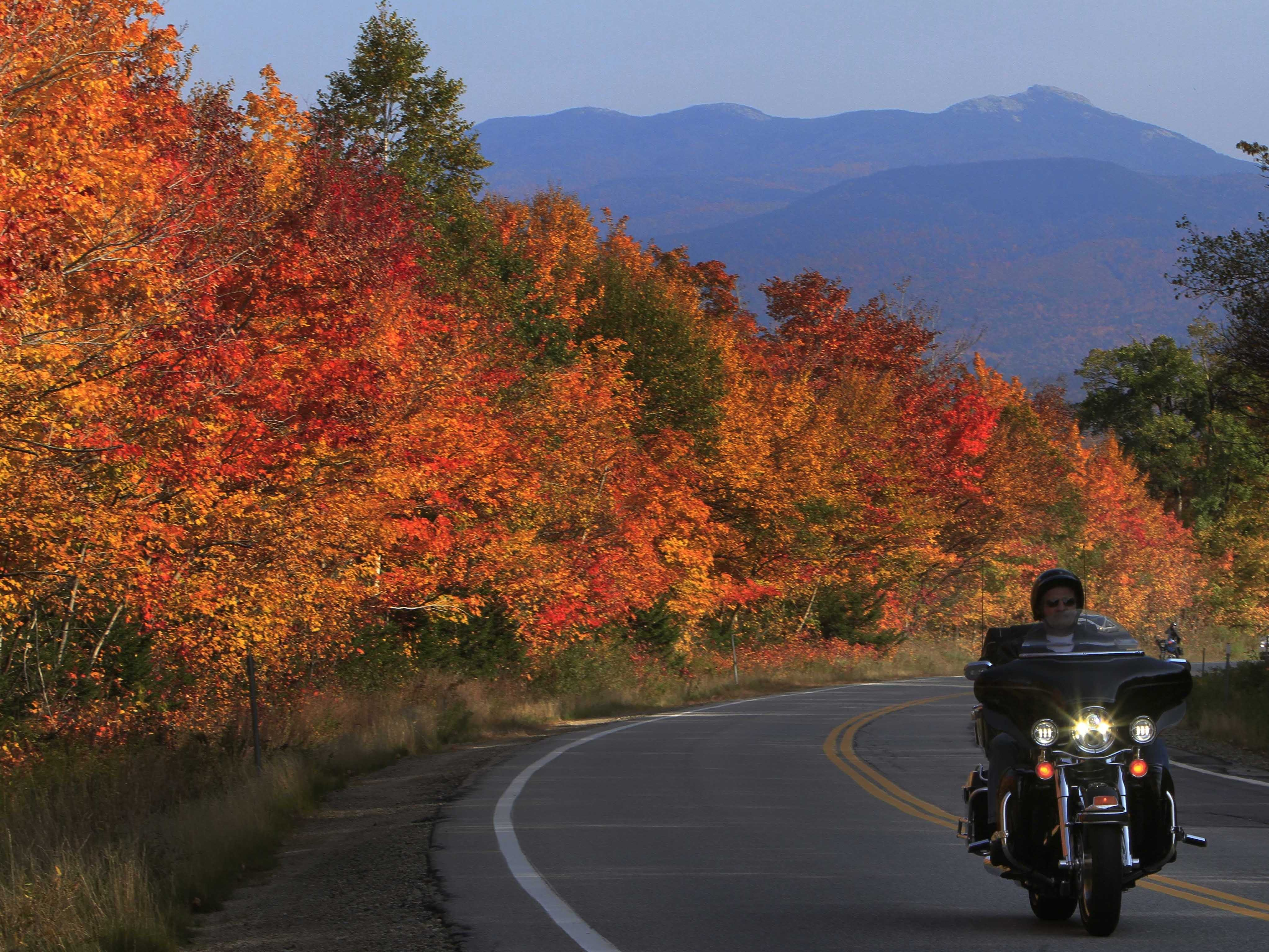 Tech Brightens Prospects for Leaf Peeping, Fitness