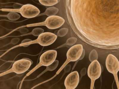 Ava Study Looks at Women's Attitudes, Emotions and Awareness About Fertility and Trying-to-Conceive