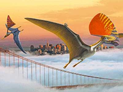 Pterosaur Psyndrome!