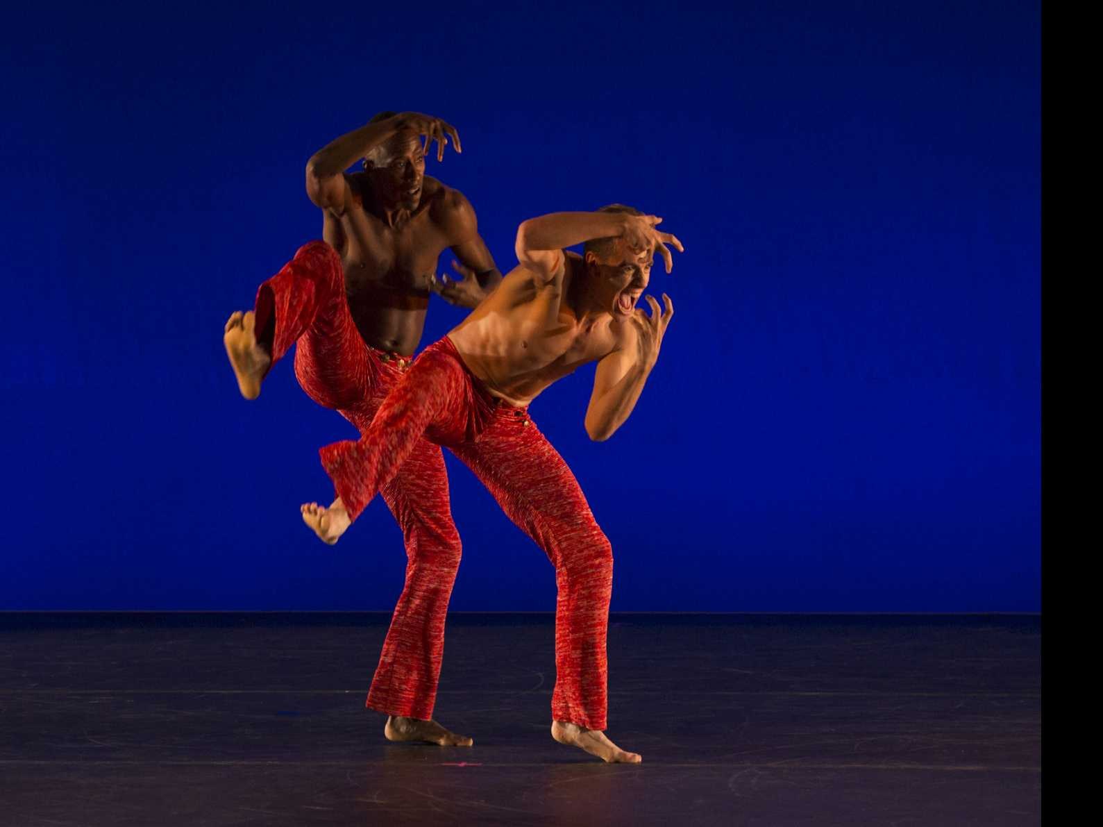 Hudson Valley Dance Festival  Raises Record-Breaking $146,297 for Dancers Responding to AIDS