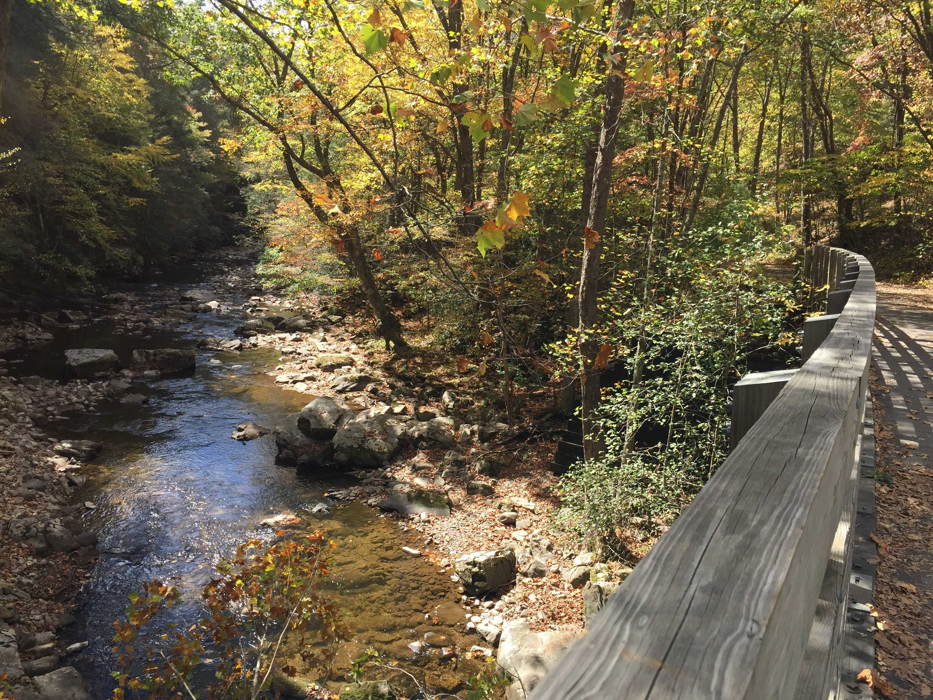 Virginia Creeper Trail Invites Bikers to Take it Easy