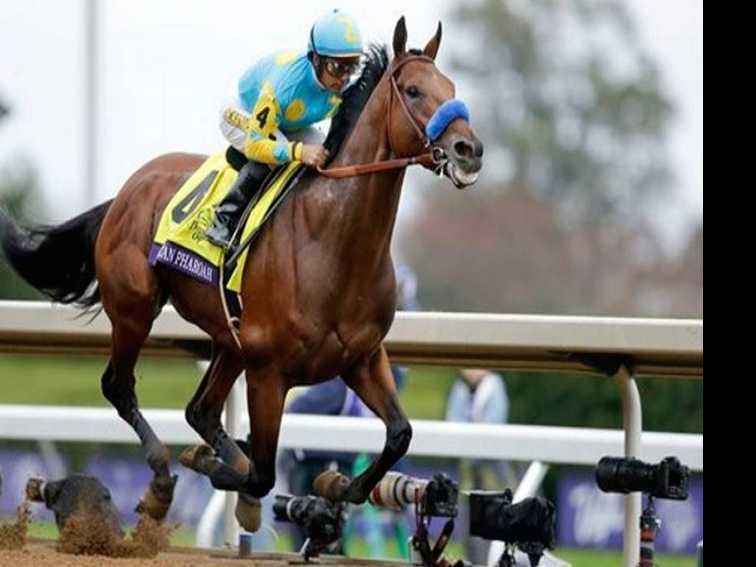 The Breeders' Cup :: A Horse of A Different Color