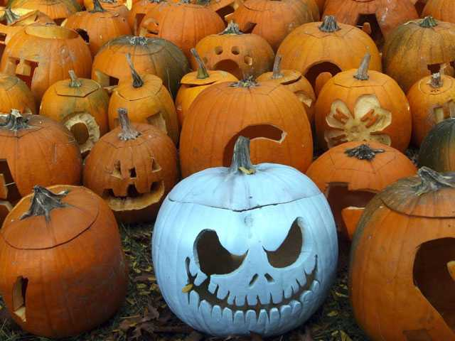 Dumb-Ass Lists: Twitter Celebrates National Pumpkin Day