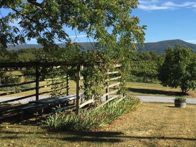 Explore Wine Country in Virginia's Scenic Shenandoah Valley