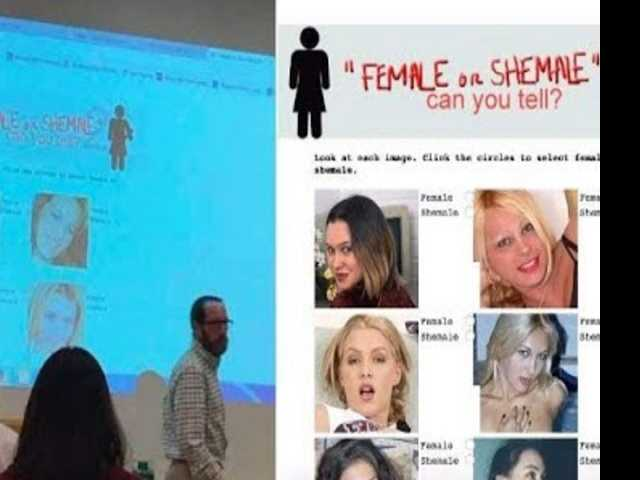New York College Professor Issues Controversial 'Female or Shemale' Quiz