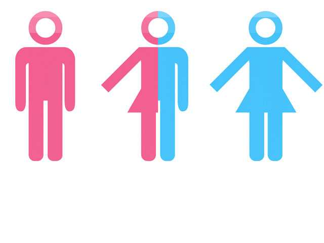 Global Surveys of Intersex & Trans Groups Show Funding Gap