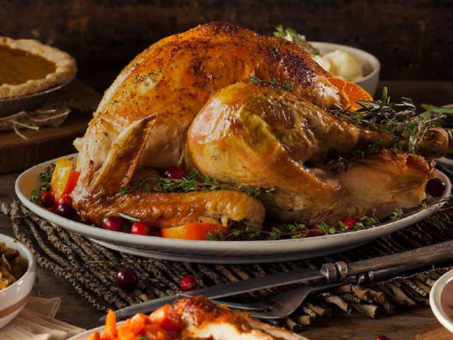 Police Warn People Not to Eat Spoiled, Trash-Picked Turkeys