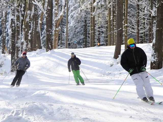 5 States to Experience 'Learn to Ski and Snowboard Month'