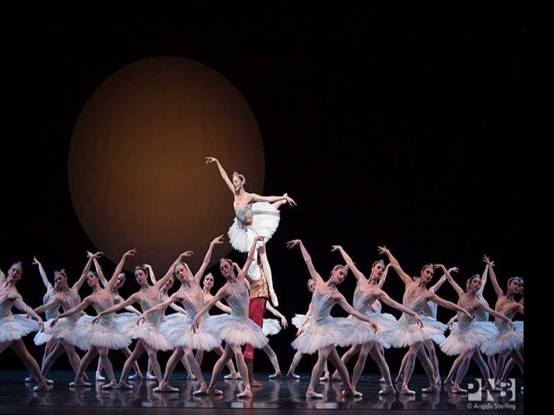 Review :: Swan Lake