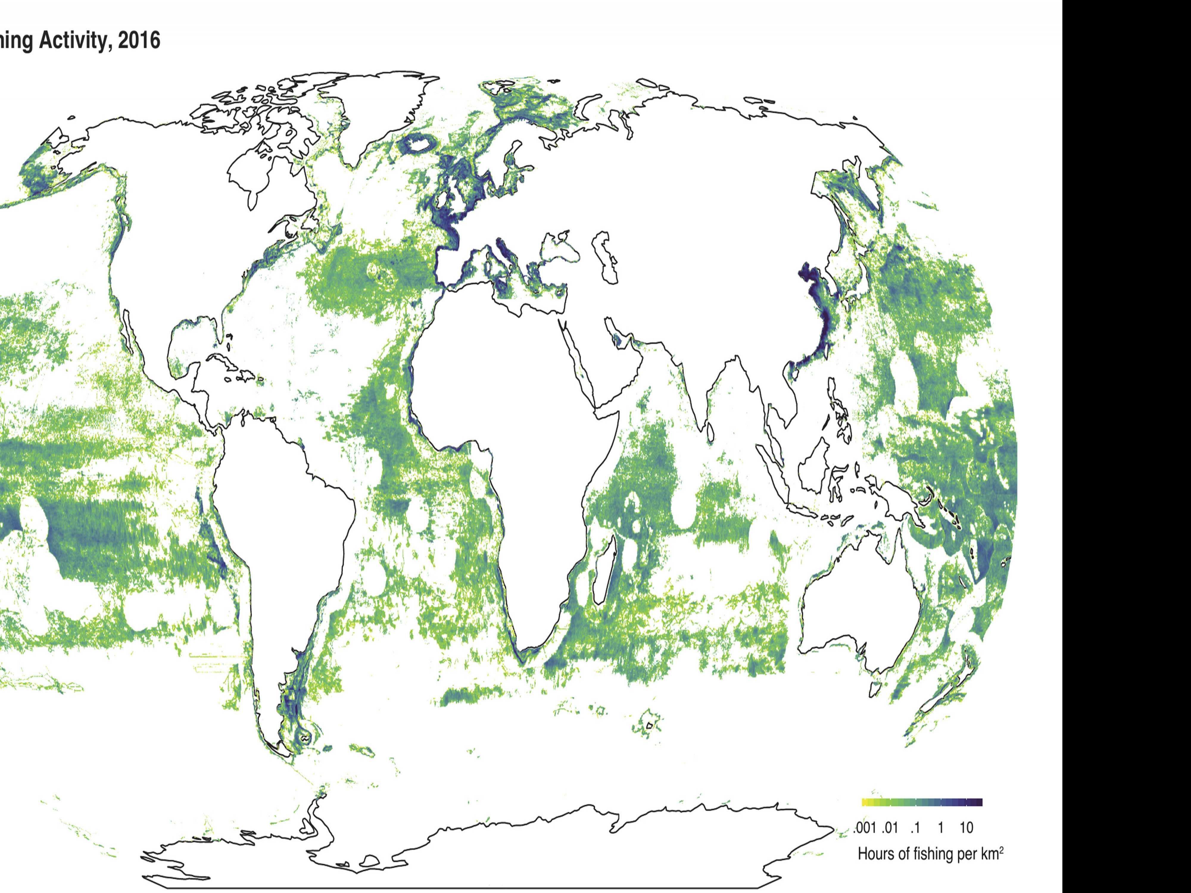 Satellites See Big Fishing's Footprint on the High Seas